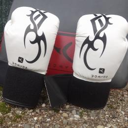 Gant de boxe FK180 initiation blanc