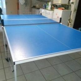 Table de tennis de table inesis