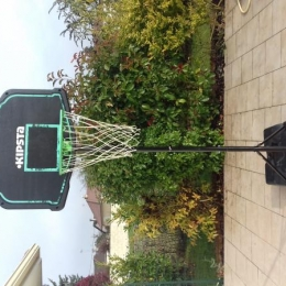 panneau de basket B200