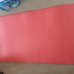 Tapis gym et plate 100 Rose